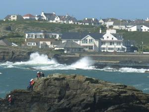 Rock Hoppers at Trearddur Bay, Anglesey