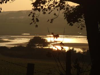 Dulas Bay - Autumn Sunshine
