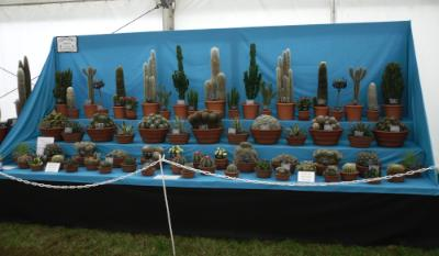 Anglesey Show