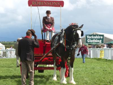 Anglesey Show Dray Wagon
