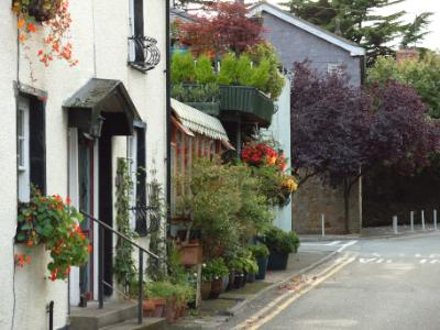 Beaumaris in Bloom