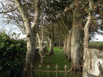 St Peirio's Church - Rhosgoch,  Anglesey