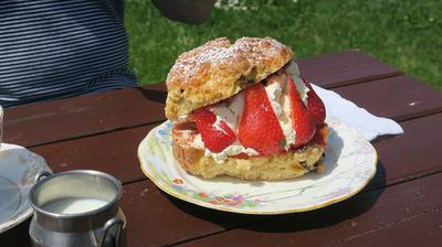 Church Bay Giant Scone - Anglesey Delight