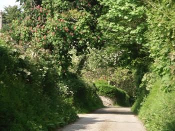 The Road to Llanfair yn y Cwmwd Church, Anglesey
