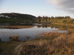 Mynydd Bodafon Anglesey