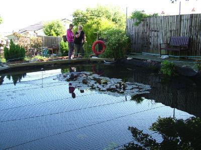 Wendy Steele's Pond