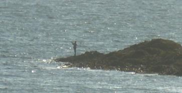 Aberffraw - Solitary Fisherman