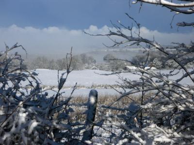 Anglesey Hidden Gem - Happy Christmas