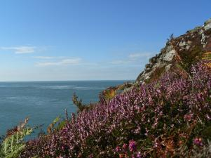 Anglesey Hidden Path - Cemaes Bay - Anglesey Hidden Gem