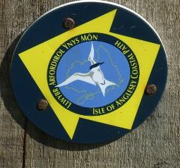 Sandy Beach Anglesey's Coastal Path - Anglesey Hidden Gem