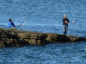 Fishing Off the Ledges