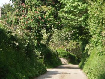 The Road to Llanfair yn y Cwmwd Church, Anglesey
