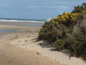 Lligwy Beach on Anglesey's East Anglesey Hidden Gem