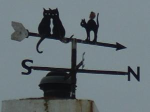 Moelfre Wind Vane - Bet You Can't Find It