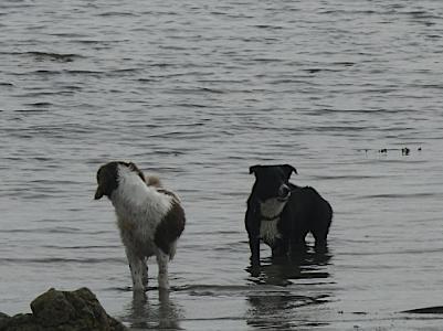 Rhosneigr Beaches – Anglesey Hidden Gem