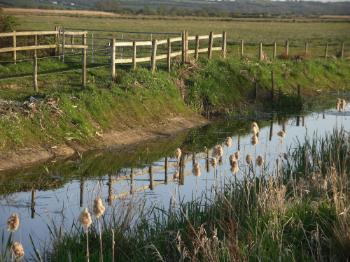 Cors Ddryga - Malltraeth Marsh Drainage Channel