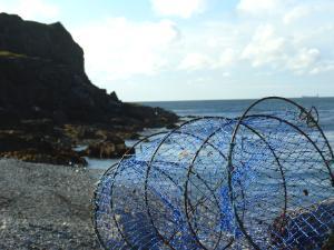 White Beach Fish Trap